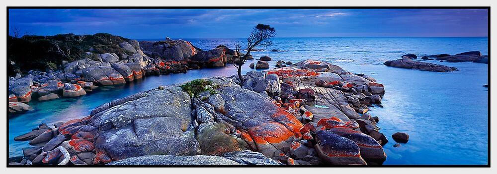 Endurance, Binalong Bay, TAS by Chris Munn