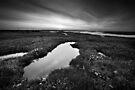 Salt Marsh Sunset BW by Andy Freer