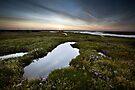 Salt Marsh Sunset by Andy Freer