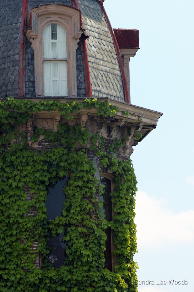 Ivy Covered Turret by Sandra Lee Woods