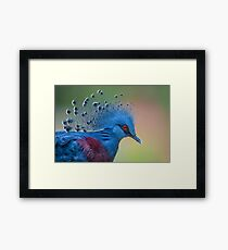 Well Crowned Framed Print