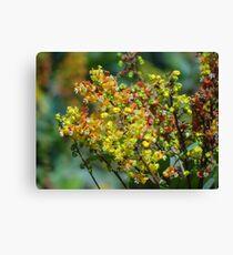 Jungle's Blossoms - Flores De La Selva Canvas Print