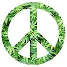 Peace symbol made of marijuana leaves. by Brett Gilbert