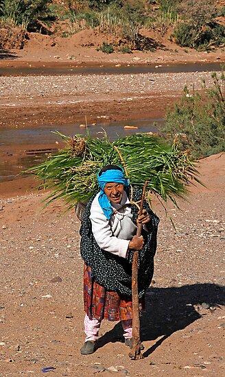 Harvesting, Skoura Morocco by Debbie Pinard