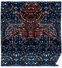 Kaleidoscopic Funnel Web - 01  Poster