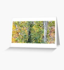 Foilage Greeting Card