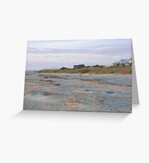 South Carolina beach scene Greeting Card