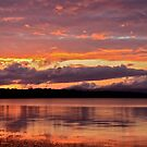 Mannering Park Sunset. by Julie  White