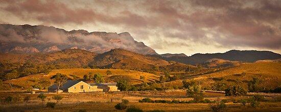 Arkaba Woolshed, Elder Range, South Australia by Neville Jones