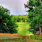 Field of Dreams by aprilann