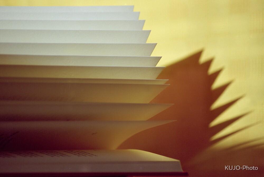 An open Book (3) by KUJO-Photo