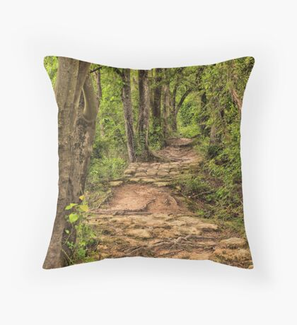 Along The Beaten Path Throw Pillow