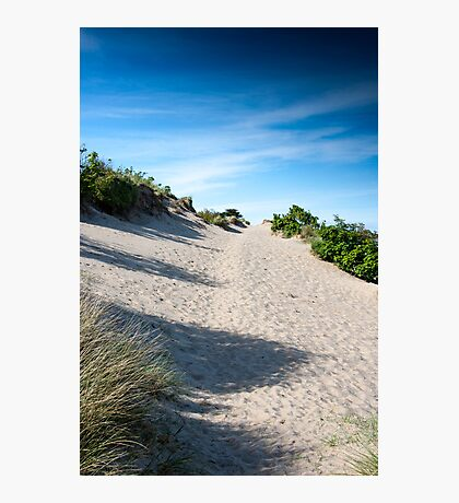 Sand Dunes and Grass. Photographic Print