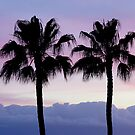 Purple sunset in Los Gigantes by Thomas Tolkien