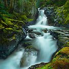 The Falls of Strathcona by Thomas Dawson