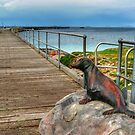 The Tanker Jetty by Eve Parry