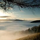 Glentress, Near Peebles, Scottish Borders, Temperature Inversion, 2005 by Iain MacLean