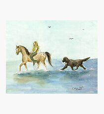 Mermaid Horse Newfoundland Dog Cathy Peek Photographic Print