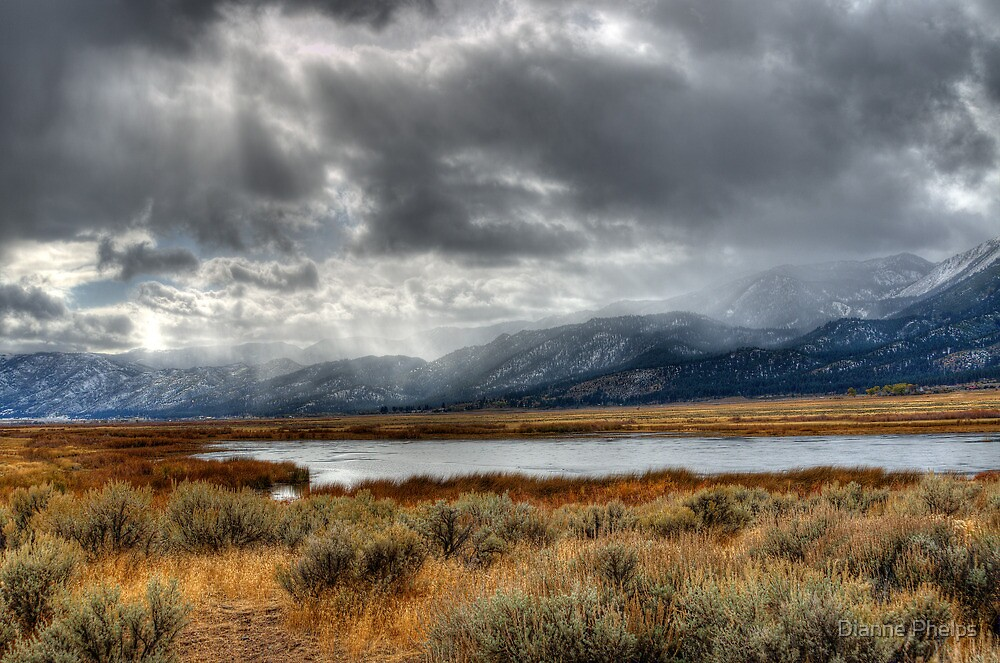 Scenic Washoe Valley by Dianne Phelps