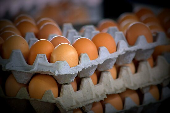"""""""Eggs for Sale""""  by James Webb"""