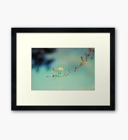 mini-ma-list Framed Print