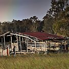 Pot of gold behind the shed by Fran53