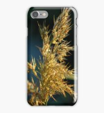 tall grasses iPhone Case/Skin