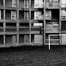 Park Hill Flats (Euro 2012) by DelayTactics