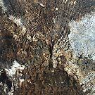Naturals by Nikki - Rotten Stump by Nikki Smith