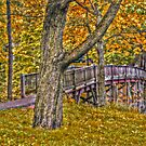Footbridge in the Fall - Advanced HDR by Jane Neill-Hancock