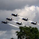 """  The Blue Angels  "" by fortner"