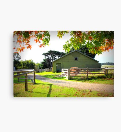 Old Shearing Shed in Autumn Canvas Print