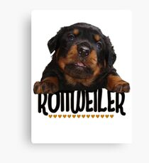 Rottweiler Love Canvas Print