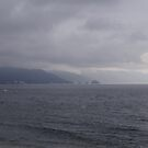 Rainy Day at the Bay - Dia lluvioso en la Bahía by PtoVallartaMex