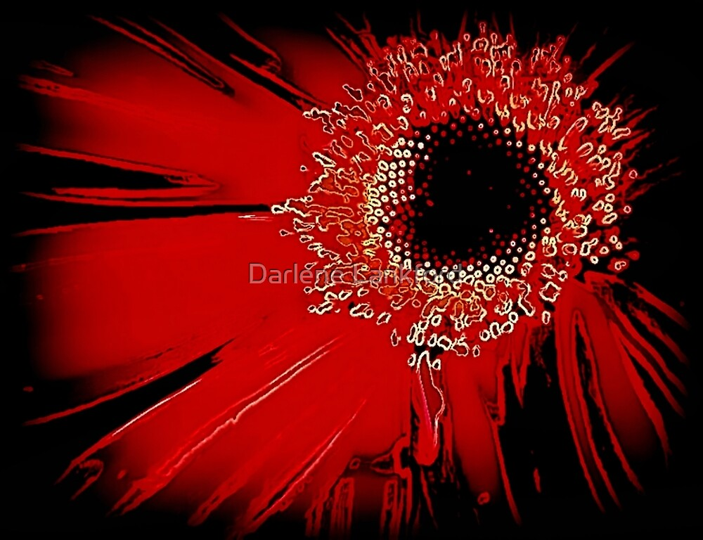 Red Gerbera Abstract by Darlene Lankford Honeycutt