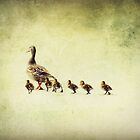 Ducks in a Row by Lea  Weikert