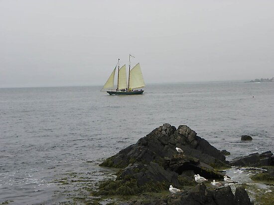 Sailing on a Foggy Day by MaryinMaine