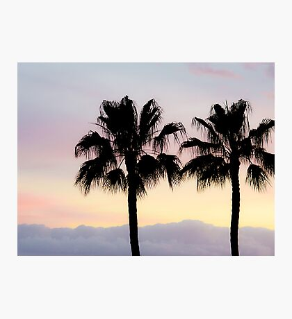 Palm trees at sunrise Photographic Print