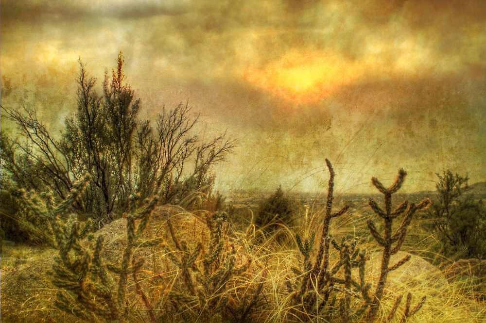 Sandiago's Gaze by Randy Turnbow