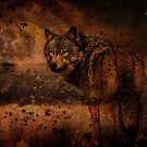 The Wolf by ☼Laughing Bones☾