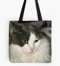 Puffin Listening To Music Tote Bag