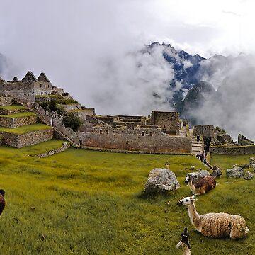 Machu Pichu by shotimagery