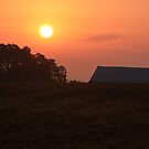 Good Morning Lebanon Valley by Yvonne Roberts