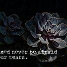 Tears by Marilyn Cornwell