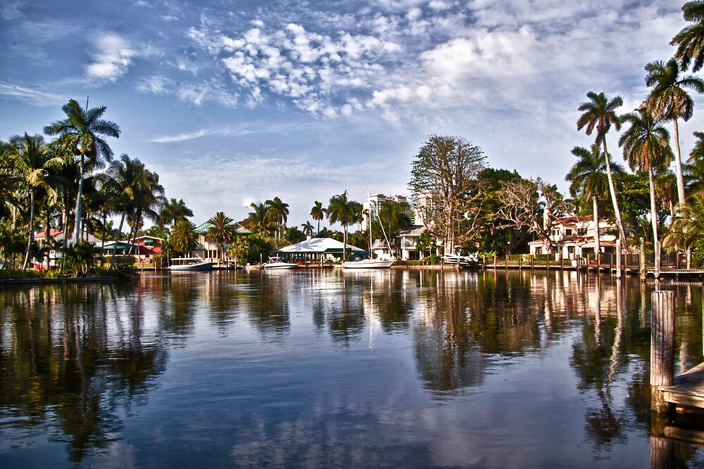 Life in Ft. Lauderdale by anorth7
