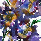 Purple Explosion by Catherine Price