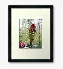 Torch Flower Framed Print