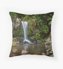 Curtis Falls  Throw Pillow