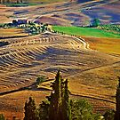 Val d' Orcia by Lynnette Peizer