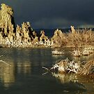 Mono Lake by Peter Hammer